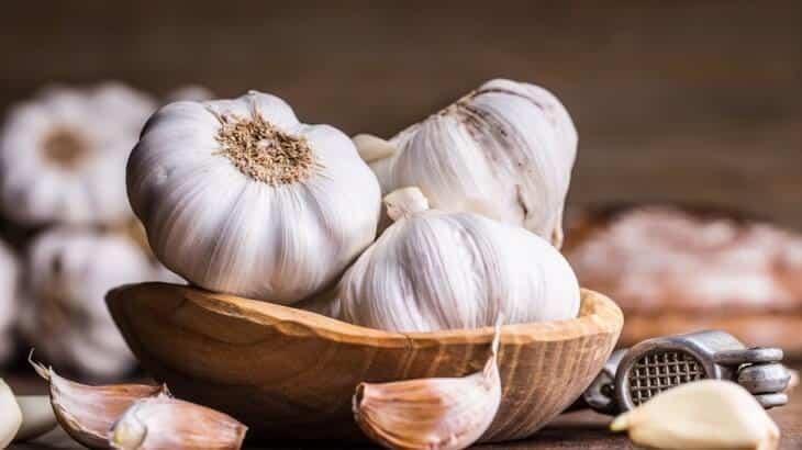 فوائد الثوم على الريق للصحة وعلاج الامراض