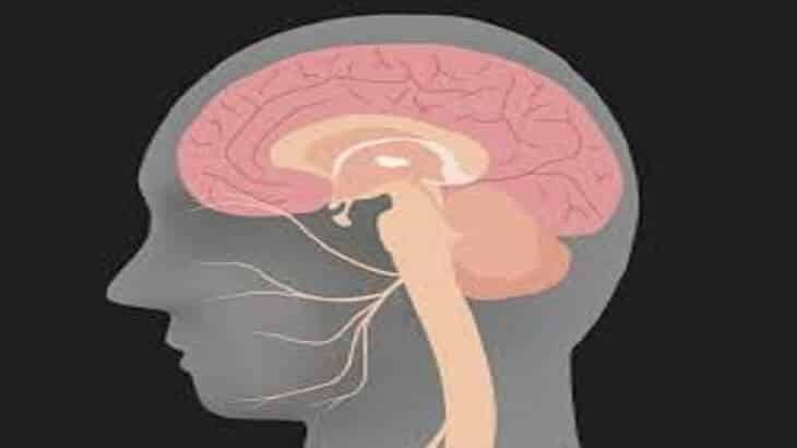اعراض العصب السابع الخفيف وطرق العلاج