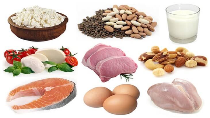 الأطعمة الغنية التي تحتوي على بروتين عالي