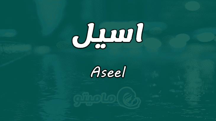 معنى اسم اسيل Aseel وصفات حاملة الاسم ماميتو