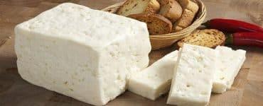 طريقة عمل الجبنة البيضاء بدون منفحة في البيت