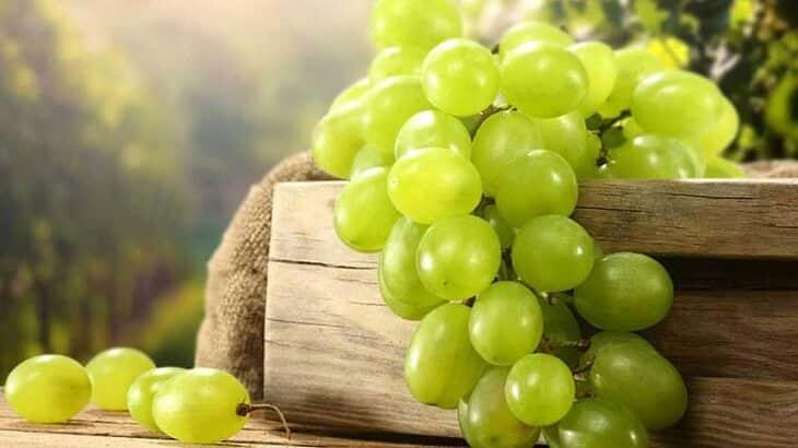 تفسير حلم اكل العنب أو مشاهدته في المنام ومعناه