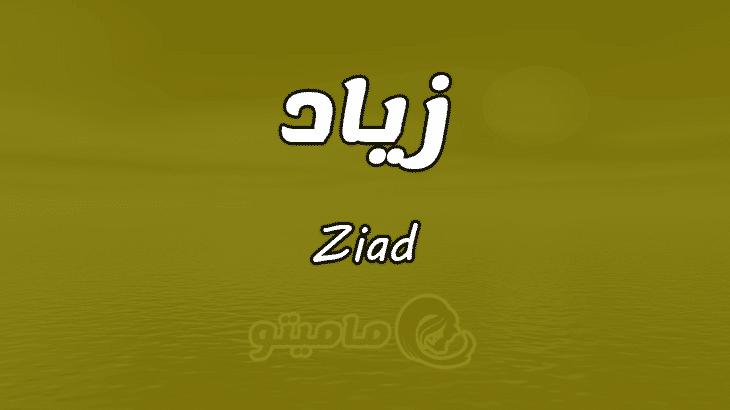 معنى اسم زياد Ziad وصفات حامل الاسم ماميتو