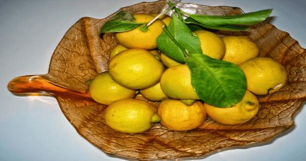 طريقة عمل الليمون المعصفر المسلوق بالصور