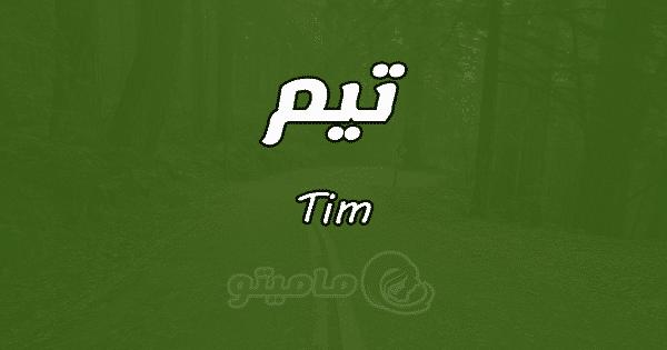معنى اسم تيم