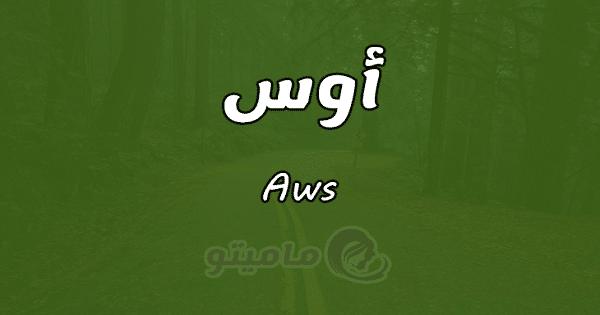 معنى اسم أوس Aws في علم النفس