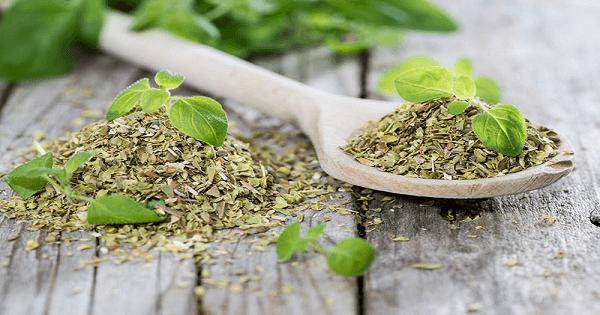 7 اعشاب لعلاج الكحه والبلغم عند الاطفال و الكبار