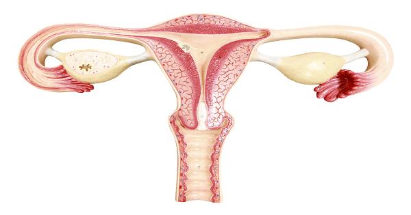 اعراض الحمل خارج الرحم في الشهر الأول بالتفصيل