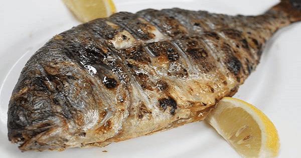 طريقة عمل السمك البلطى المشوي بالزيت والليمون