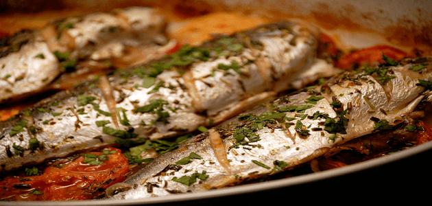 طريقة عمل صينية السمك الماكريل في الفرن
