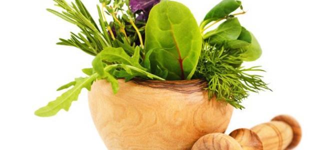 علاج الحمى الروماتيزمية بالأعشاب الطبيعية