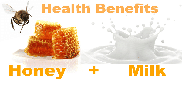 فوائد شرب الحليب مع العسل على الريق وطرق تحضيره