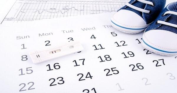 ما هي أيام التبويض للحمل بعد الدورة بالتفصيل