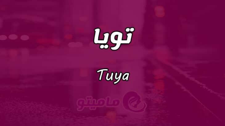 معنى اسم تويا Tuya وصفات حاملة الاسم