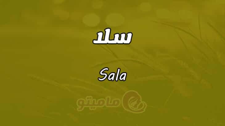 معنى اسم سلا Sala وشخصيتها حسب علم النفس | ماميتو