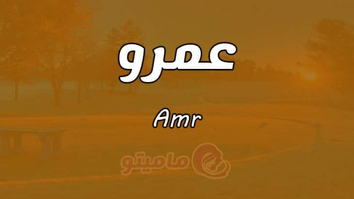 معنى اسم عمرو Amr حسب علم النفس