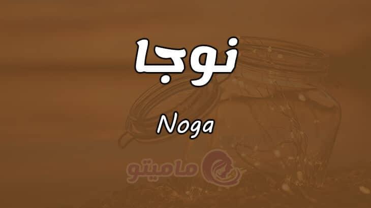 معنى اسم نوجا Noga وصفات حاملة الاسم