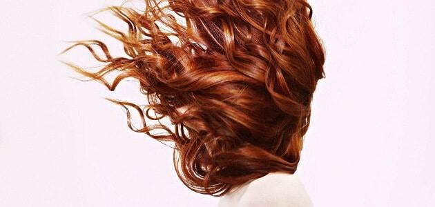 أنواع الشعر للنساء وكيفية الاعتناء به