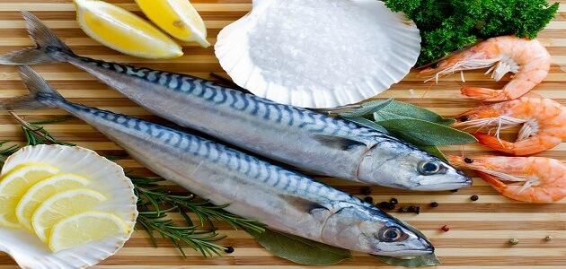 طريقة عمل صينية السمك الماكريل في الفرن ماميتو