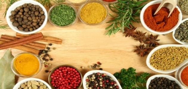علاج زيادة حمض اليوريك بالأعشاب في الدم