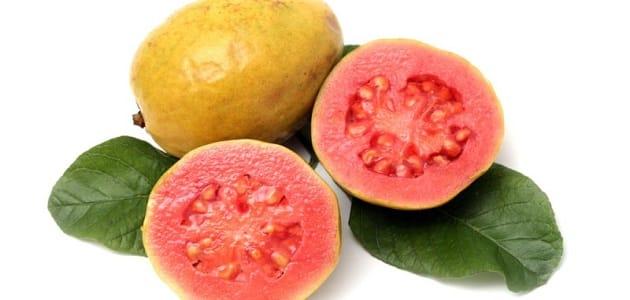 فوائد الجوافة و أضرارها على المعدة