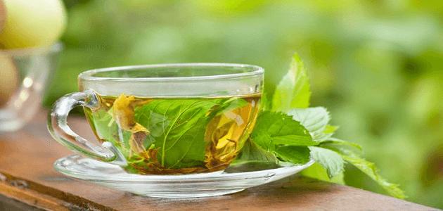 فوائد وأضرار الشاي الأخضر على الريق