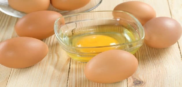 فوائد تناول البيض للشعر والجسم