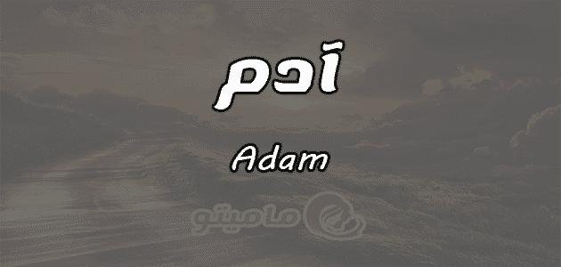 معنى اسم آدم Adam وشخصيته حسب علم النفس