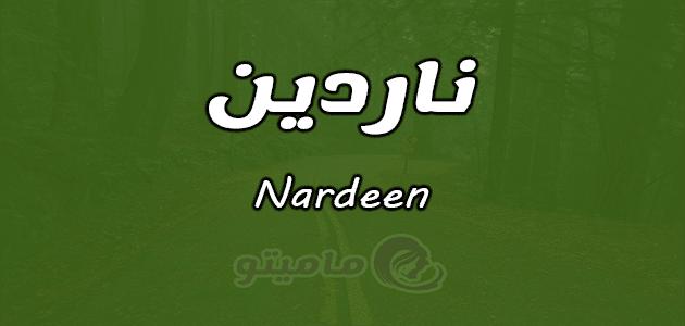 معنى اسم ناردين Nardeen وشخصيتها حسب علم النفس