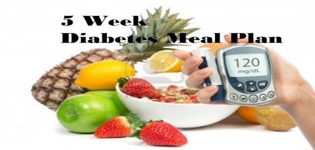 وجبات تغذية مريض السكر ليوم كامل