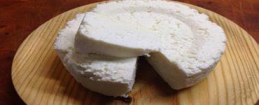 استخدامات جبنة ريكوتا في الطبخ بالتفصيل