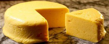 طريقة عمل الجبنة الفلمنك الصفراء بالصور