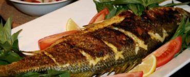 فوائد الاسماك المشوية والمقلية للشعر