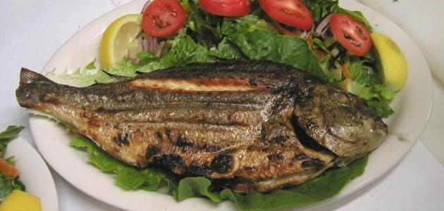 فوائد السمك المشوي للتخسيس