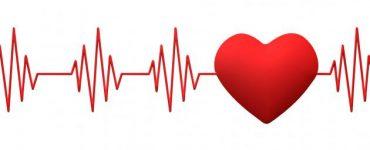 ما هو المعدل الطبيعي لضربات القلب عند الرجال والنساء