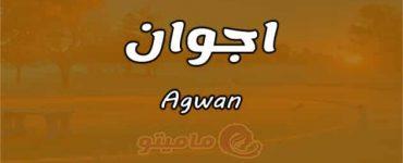 معنى اسم اجوان Agwan وشخصيته وصفاته