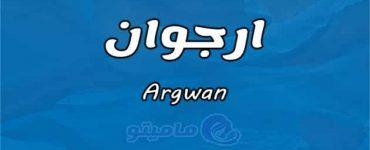 معنى اسم ارجوان Argwan في علم النفس
