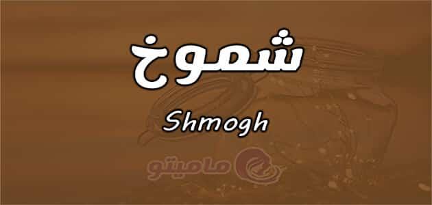 معنى اسم شموخ Shmogh في علم النفس