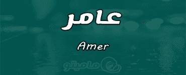 معنى اسم عامر Amer حسب علم النفس