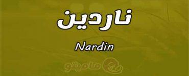معنى اسم ناردين Nardin واسرار شخصيتها