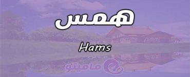 معنى اسم همس Hams واسرار شخصيتها وصفاتها