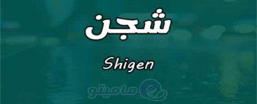 معنى شجن Shigen في علم النفس