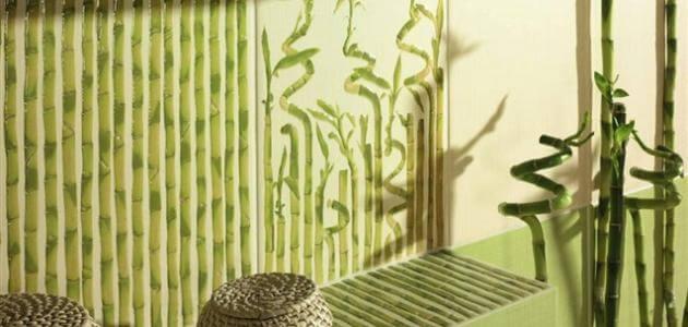 15 فائدة عن نبات الخيزران وكيفية زراعته في المنزل