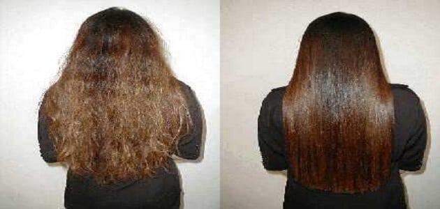أفضل الطرق لعلاج ومنع جفاف الشعر