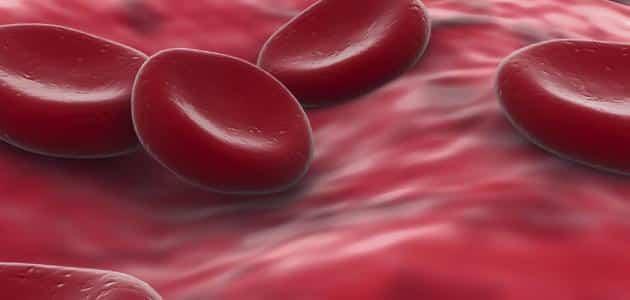 الصفائح الدموية