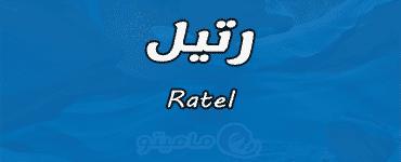 معنى اسم رتيل Ratel حسب شخصيتها في علم النفس