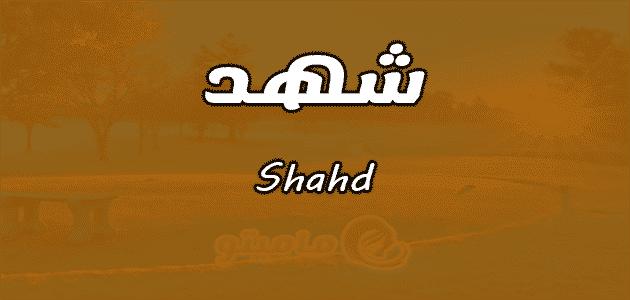 معنى اسم شهد Shahd وشخصيتها حسب علم النفس ماميتو