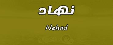 معنى اسم نهاد Nehad حسب علم النفس