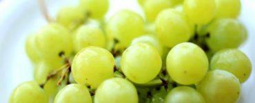هل العنب يزيد الوزن ام ينحف
