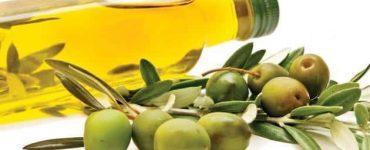 5 فوائد عند تناول زيتون الجوف لعلاج مشاكل المعدة